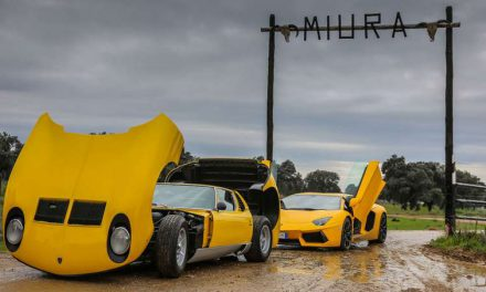 Lamborghini Miura on A Trip To the Bull Breeding Farm In Spain